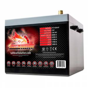 FT1150-6T High-Performance AGM Battery
