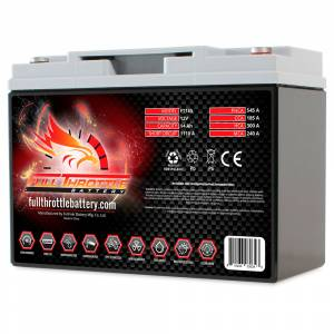 FT185 High-Performance AGM Battery