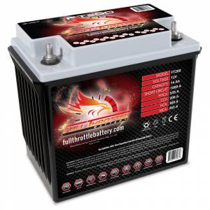 FT200 High-Performance AGM Battery