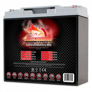 FT230 High-Performance AGM Battery