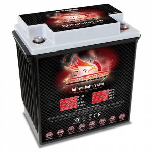 FT265 High-Performance AGM Battery